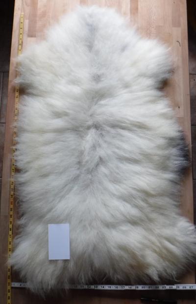 SheepSkin16_04