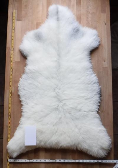 SheepSkin16_06